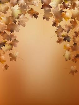 Jesienne liście szablon tło.