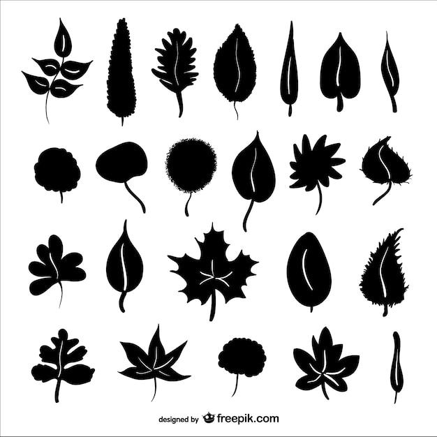 Jesienne liście wektor sylwetki