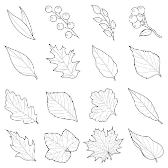 Jesienne liście zestaw czerni i bieli. rysowanie liniowe.kolorowanka antystresowa dla dzieci i dorosłych