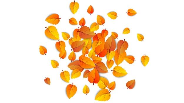 Jesienne spadające liście na białym tle. jesienny okrągły żółty liść opada, liście drzewa i złote liście. września jesień złoty liść granicy. ilustracja wektorowa eps10