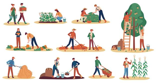 Jesienne zbiory. robotnicy rolni zbierający uprawy dojrzałe warzywa, zbieranie owoców i jagód, usuwanie liści, sezon rolnictwo wektor zestaw. mężczyzna i kobieta kopią ziemniaki, zbierają dynię i kukurydzę