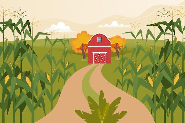 Jesienny krajobraz z polami kukurydzy farma dom pole droga czas na zbiory ilustracji wektorowych płaski