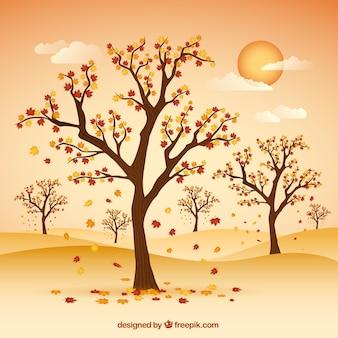 Jesienny łąka z drzewami