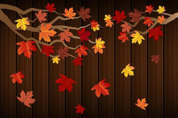 Jesienny liść klonu w tle
