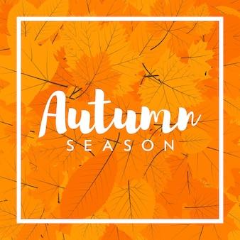 Jesienny nowy sezon wyprzedaży i rabatów, promocji i oferty. malowane napisy rękami. szablon etykiety i transparentu z żółtymi czerwonymi liśćmi.
