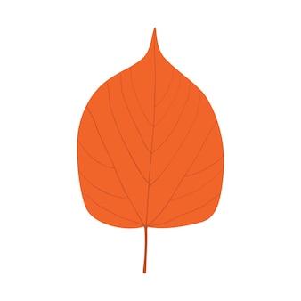 Jesienny pomarańczowy liść