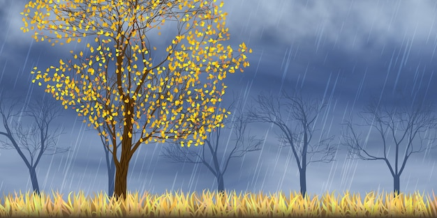 Jesienny widok, drzewa. dramatyczne jesienne niebo, pada deszcz.