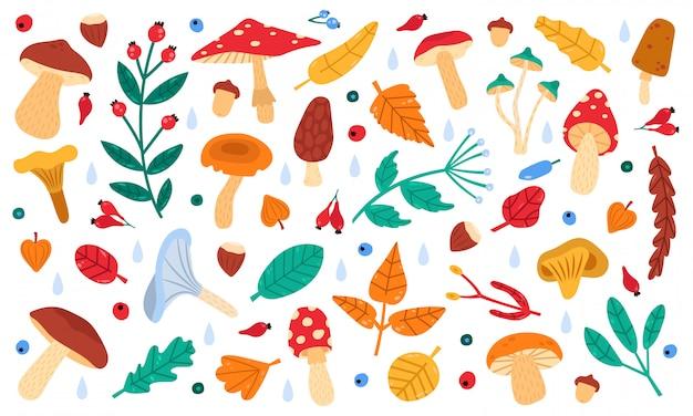 Jesienny wystrój botaniczny. jesienne zbiory leśnych liści, kwiatów, jagód i grzybów, zestaw ikon ilustracji kolekcji botaniki jesień. jesienny las rysunek, gałąź i grzyb
