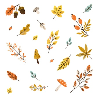 Jesienny wzór. ilustracja liście i grzyby.