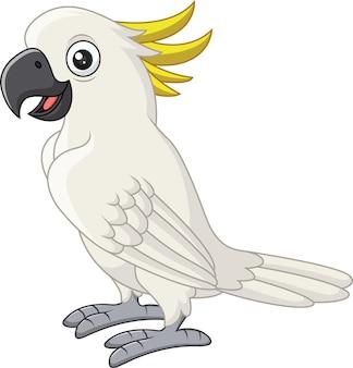 Kakadu biały kreskówka na białym tle