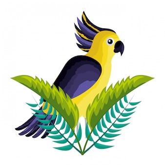 Kakadu egzotyczny ptak pozostawia tropikalnych