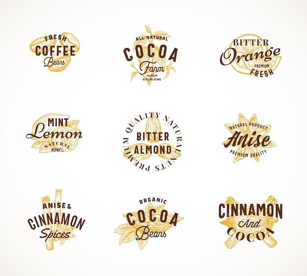 Kakao przyprawy i kawa streszczenie znak, symbol lub zestaw szablonów logo. ręcznie rysowana fasola i przyprawy z premium vintage typography. stylowe klasyczne herby lub koncepcja etykiety.