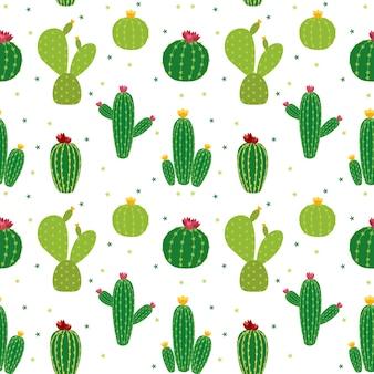 Kaktus ikona kolekcja bezszwowe tło wzór