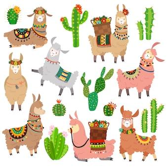 Kaktus lamy. zestaw chile lamy alpaki i kaktusów dzikiej lamy