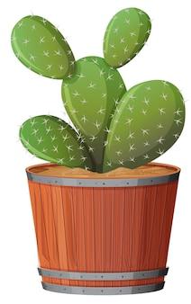 Kaktus opuncja w drewnianym garnku na białym tle
