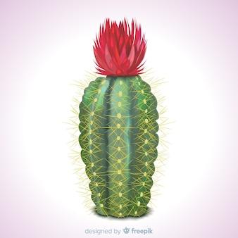 Kaktus roślina w realistycznym stylu