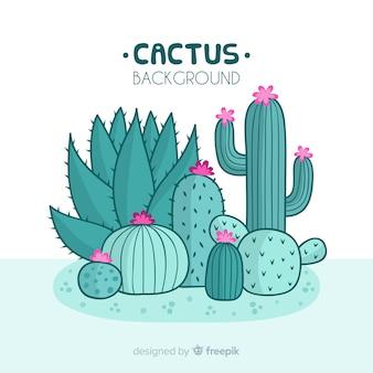 Kaktus tło