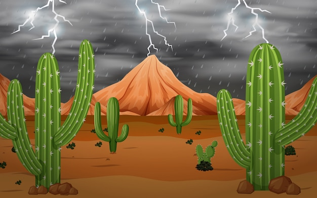 Kaktus w burzy