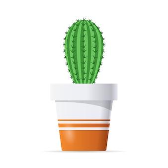 Kaktus w doniczce na białym tle
