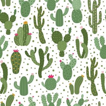 Kaktus wzór