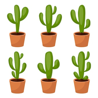 Kaktusa projekta ustalona ilustracja odizolowywająca na białym tle