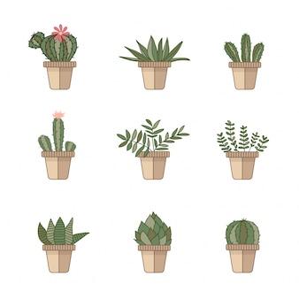 Kaktusowe ikony w płaskim stylu na białym tle