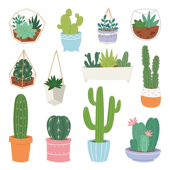 Kaktusowej kreskówki botanicznych kaktusów doniczkowa śliczna kaktusowa tłustoszowata rośliny botaniki ilustracja na białym tle
