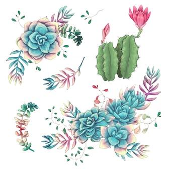 Kaktusy ręka rysująca na białym tle