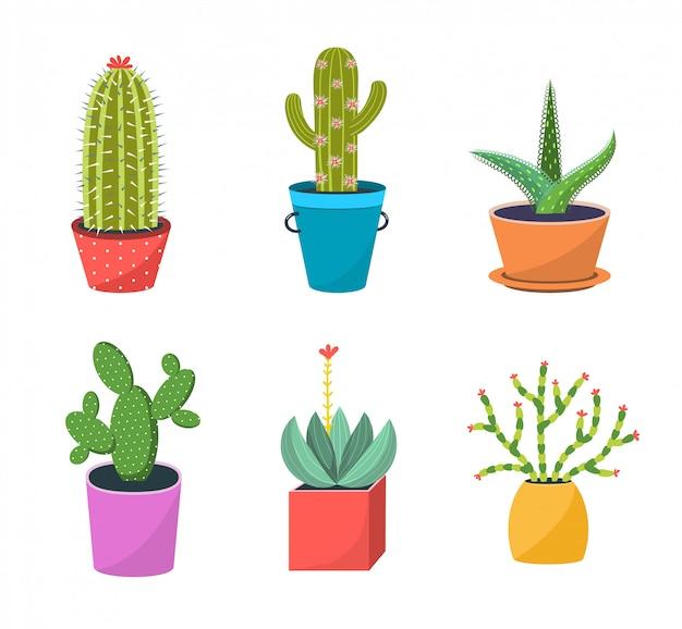 Kaktusy w doniczkach płaski zestaw ilustracji