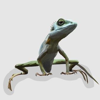 Kameleon realistyczne ręcznie rysowane ilustracje i wektory