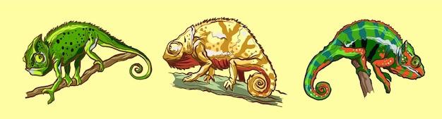 Kameleony jaszczurki zwierząt.