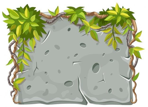 Kamienna deska z liśćmi i gałęziami liany.