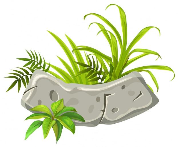 Kamienna deska z tropikalnymi liśćmi i trawą.
