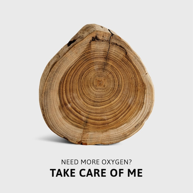 Kampania dotycząca ponownego zalesiania szablonu świadomości ekologicznej