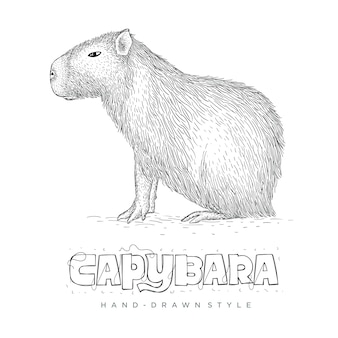 Kapibara ręcznie rysowane ilustracji zwierząt