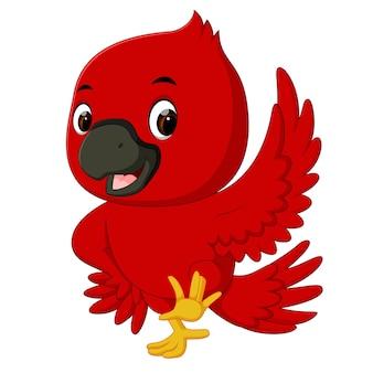 Kardynał ptak kreskówka