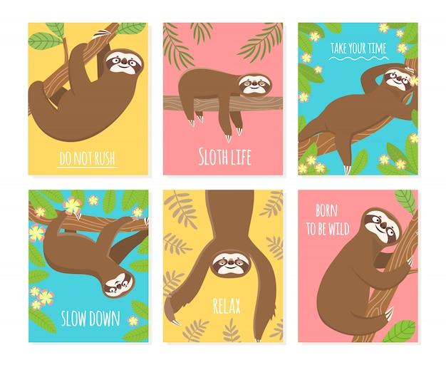 Karta lenistwa. śliczne zwierzę drzemiące, senne leniwe leniwce.