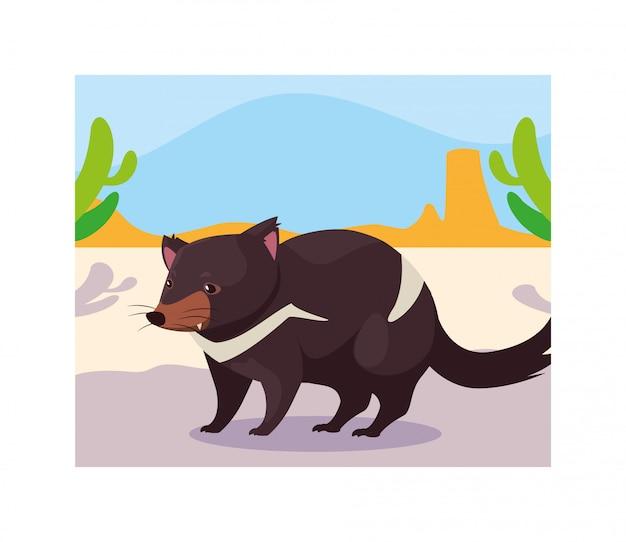 Karta z diabłem tasmańskim w australijskim krajobrazie
