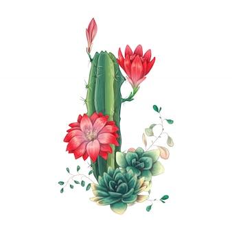 Karta z zestawem kaktusów i sukulentów