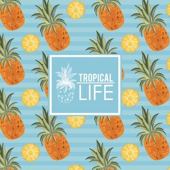 Karta życia tropikalnego i plaży latem