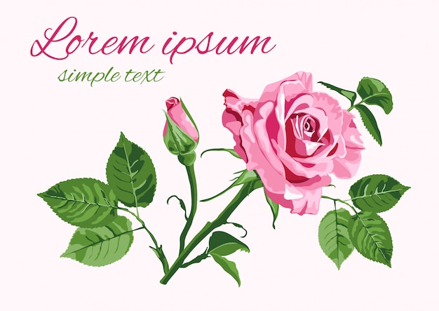 Kartkę z życzeniami z róż na białym tle