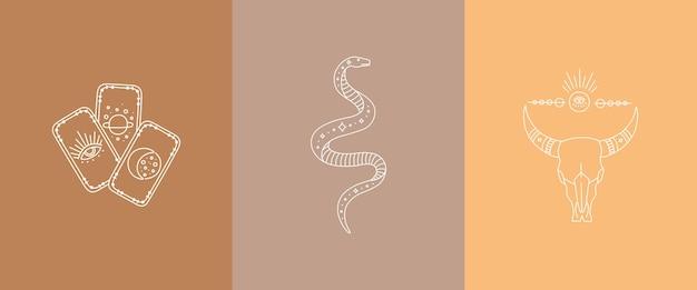 Karty tarota boho, czaszka byka i węża astrologia, zestaw grafiki liniowej, czeski.