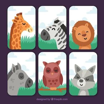 Karty z różnymi szczęśliwymi zwierzętami