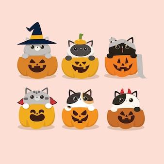 Kawaii ładny płaski projekt halloween kot i zestaw dyni