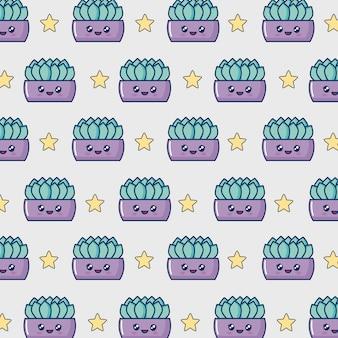 Kawaii puli kaktusów