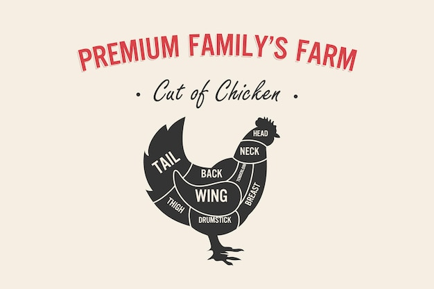 Kawałek mięsa zestaw plakat schemat i schemat rzeźnika kurczak vintage typograficzne handdrawn