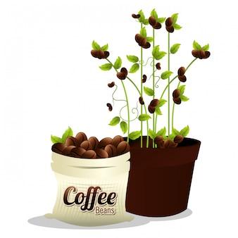 Kawiarnia i napój