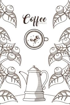 Kawy z roślin i fasoli