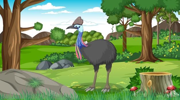 Kazuar w lesie lub w lesie tropikalnym na scenie dziennej