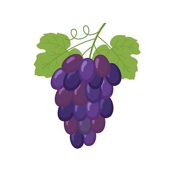 Kiść winogron na wino
